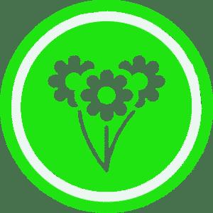 Green Team Contracting Lunenburg Lawn Care Garden Maintenance